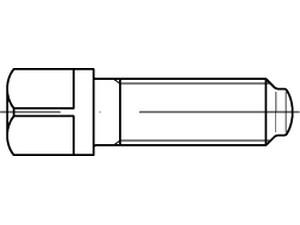 Vis à tête carrée à embase cylindrique et téton court - DIN 480