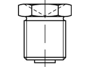 Graisseur en forme de trémie DIN 3405