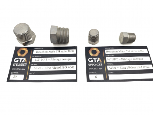 Bouchon TH - NPT - Zinc nickel -GTA